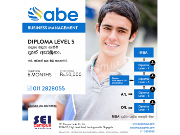 ABE Business Management