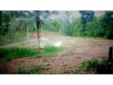 Land for sale Nittambuwa