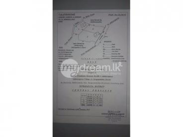 land for Sell in Adhikarigama