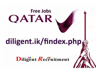Bus Drivers Vacancy in Qatar