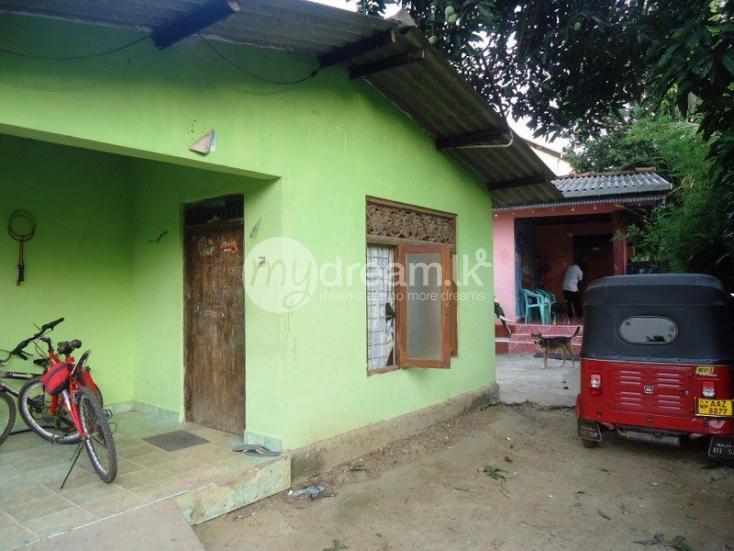 Two Bed Room House For Rent In Kiribathgoda
