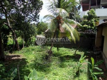 Land for sale at Kottawa, close to High-Level Road.