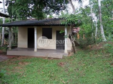 40 Perches Land with House for sale in Pilikuttuwa, Gampaha