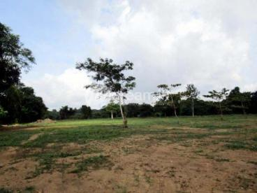 A beautiful water front land for Sale at Akaravita, Gampaha.