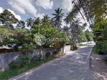 41 Perches Land for Sale at Indigolla, Gampaha.
