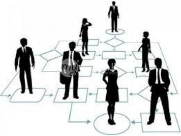 management  trainees