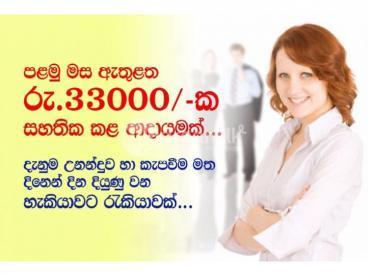 Data Entry Ad Posting & Form Filling Job