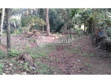 Land for sale in Kiribathgoda/Pamunuwila