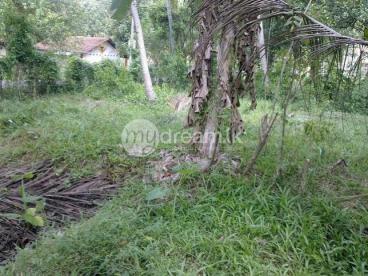 Land for Sale on Kuliyapitiya Hettipola Rd, near by Deegalla junction,